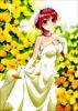五等分の花嫁∬ 第1巻
