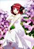 五等分の花嫁∬ 第2巻